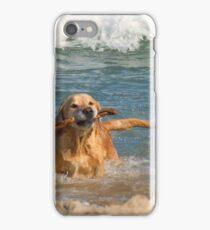 GOLDEN RETRIEVING iPhone Case/Skin