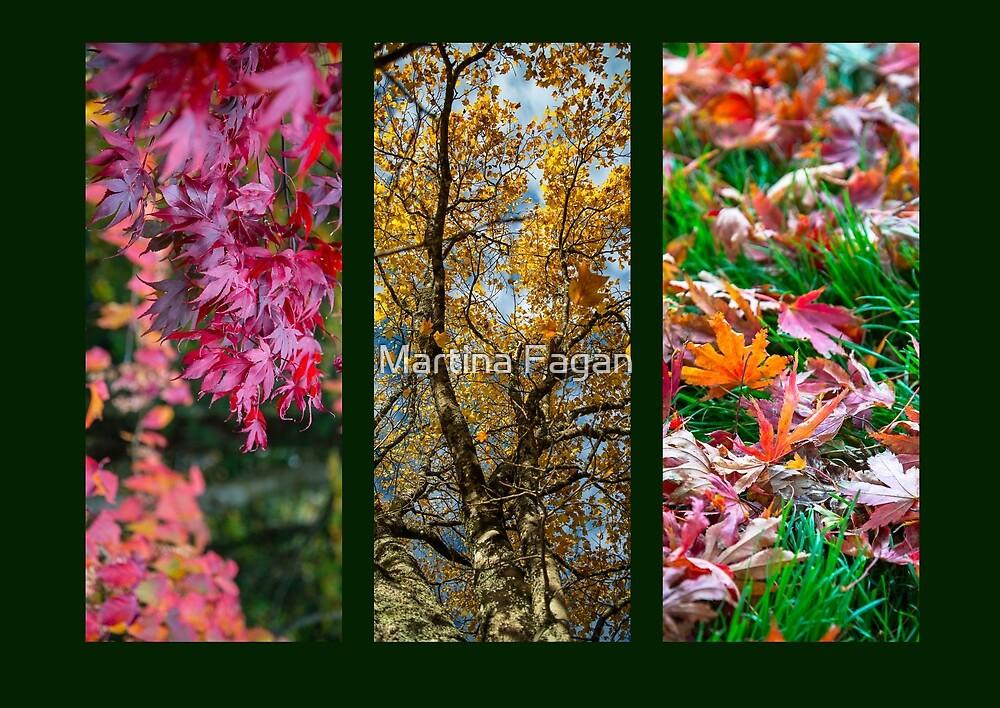 Autumn Triptych  by Martina Fagan