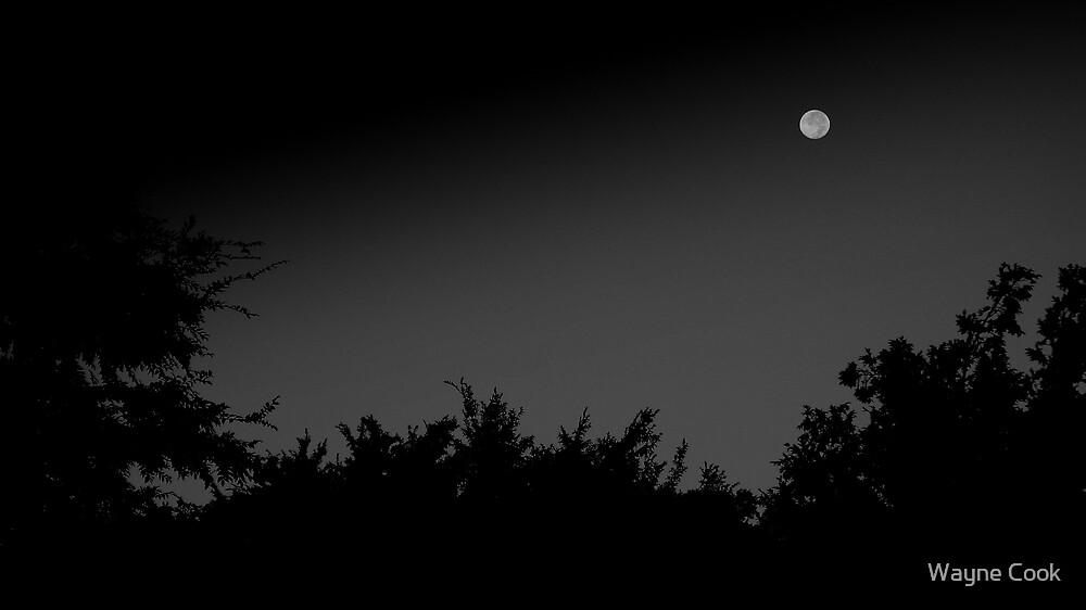 September Moon by Wayne Cook