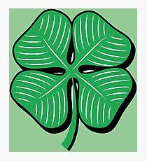 Irish Lucky Shamrock Photographic Print