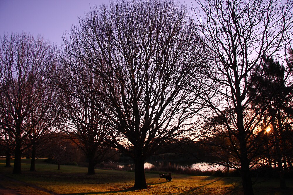 Centenial Park Sunset by Peter Husband