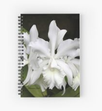 Elegant Orchids ~ Cluster of Three Spiral Notebook