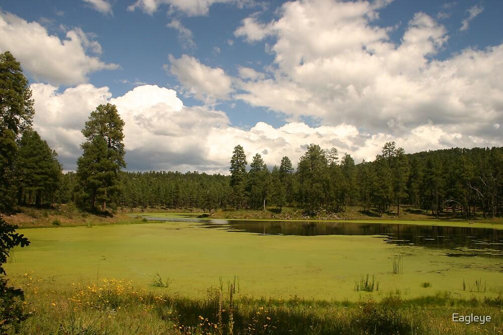 Bootleg Lake in September by Eagleye