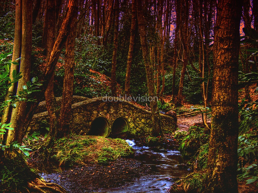 Bridge over little water by doublevision