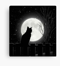 Silent night Cat looking at the full moon Canvas Print