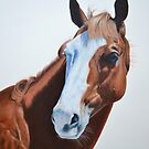 Apache Cat by evequineart
