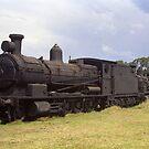 Old Steam Locomotive at Dorrigo, NSW, Australia by Bev Pascoe