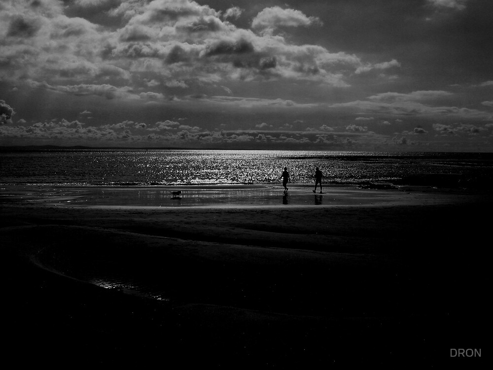 WALKING THE DOG ON THE BEACH by DRON
