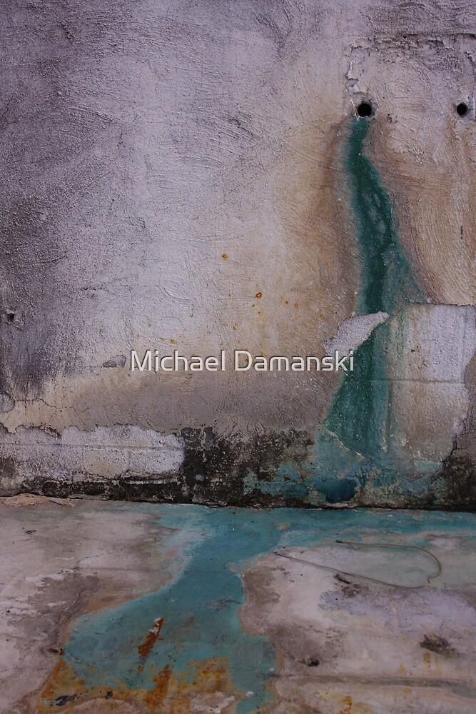 The Wall by Michael Damanski