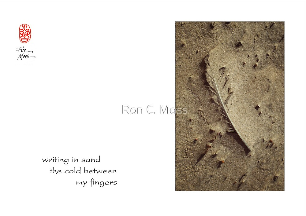 writing in sand by Ron C. Moss