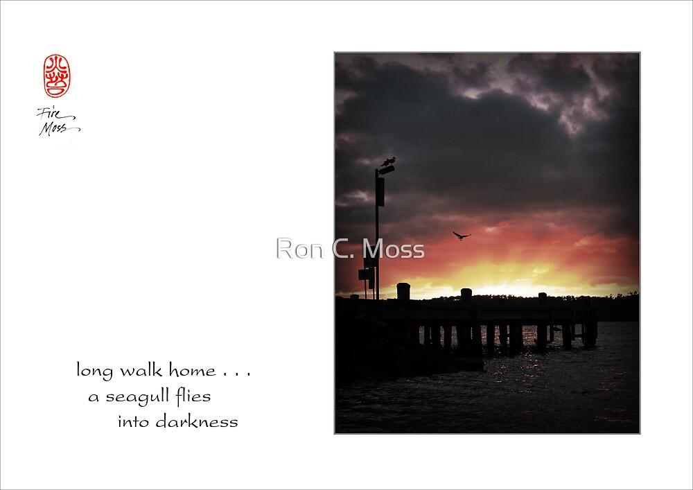 long walk home by Ron C. Moss
