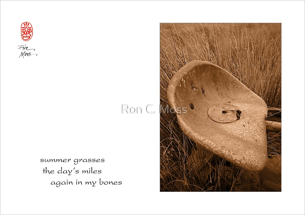 summer grasses by Ron C. Moss