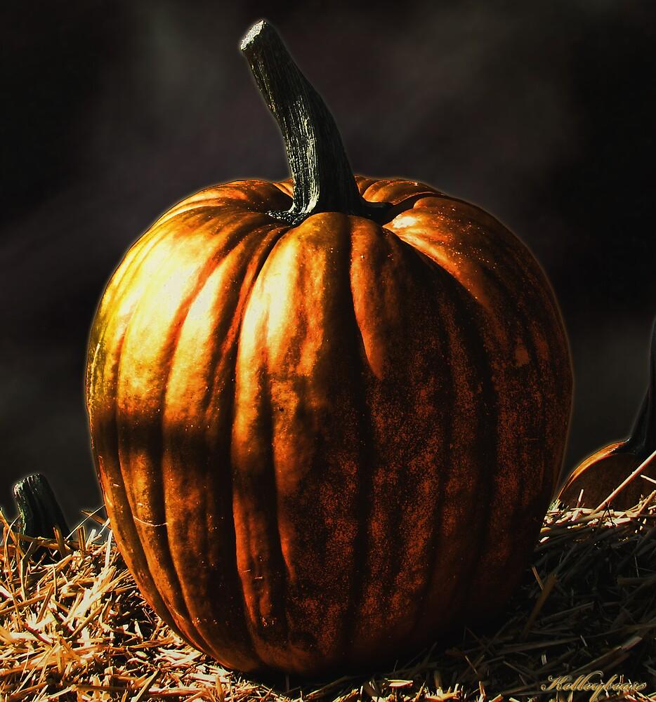 A Pumpkin  by kelleybear