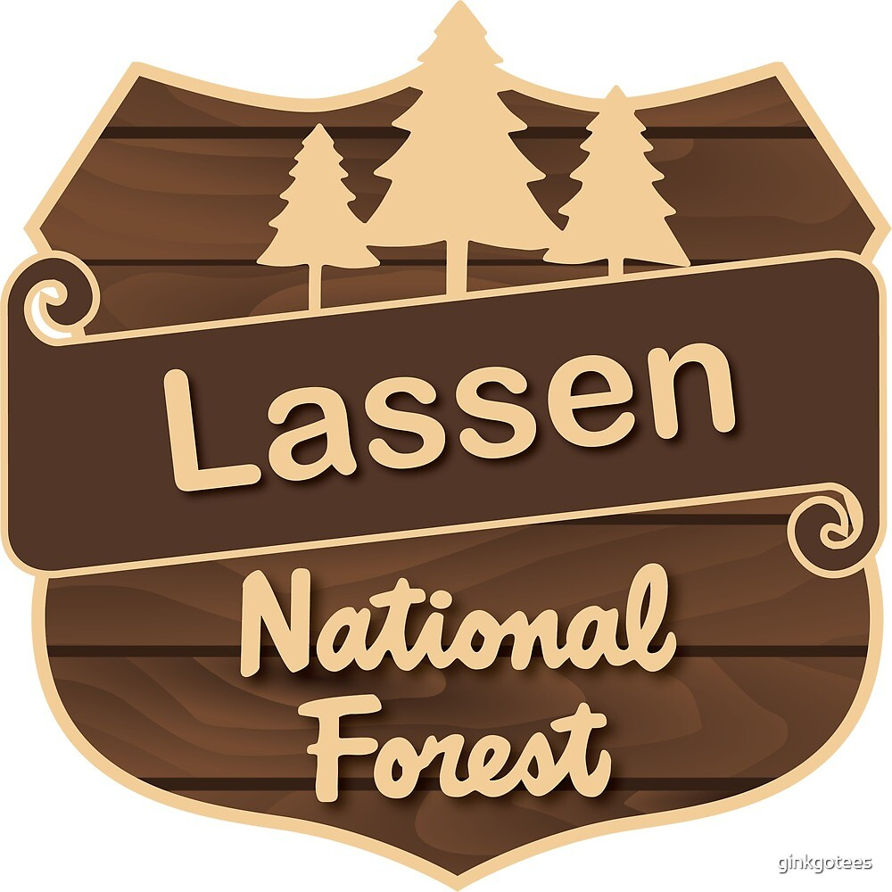 Lassen National Forest by ginkgotees