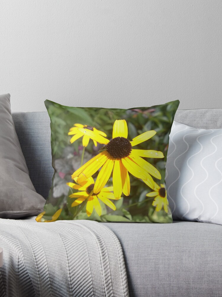 Black-Eyed Susans by doodlequeen27