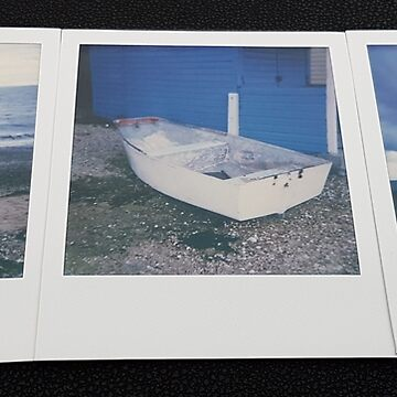 Polaroid 600 Collage by Bluecloud184
