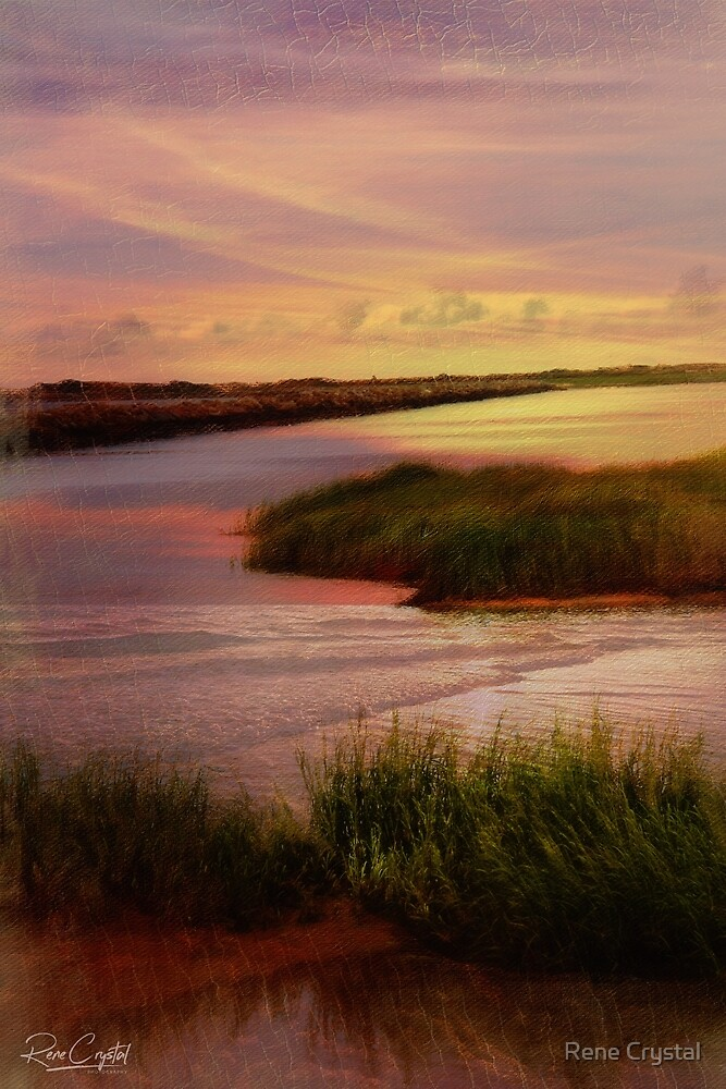 Early One Cape Cod Morn PTown by Rene Crystal