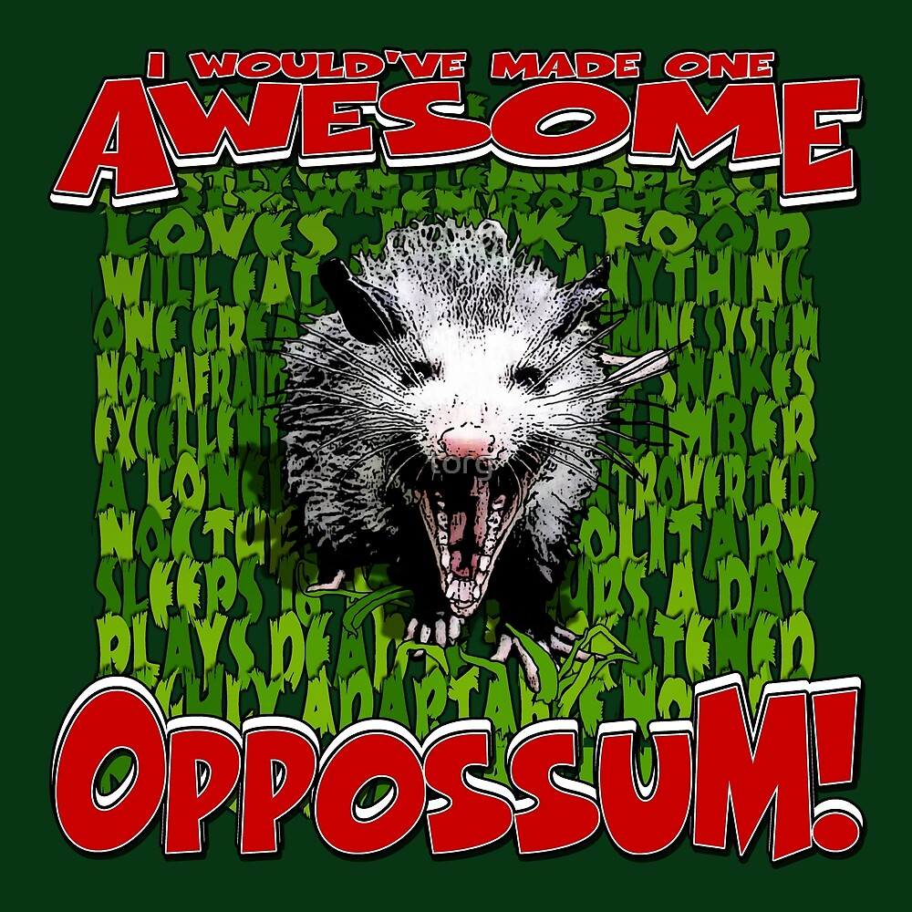 I Would've Made One AWESOME OPOSSUM! by torg