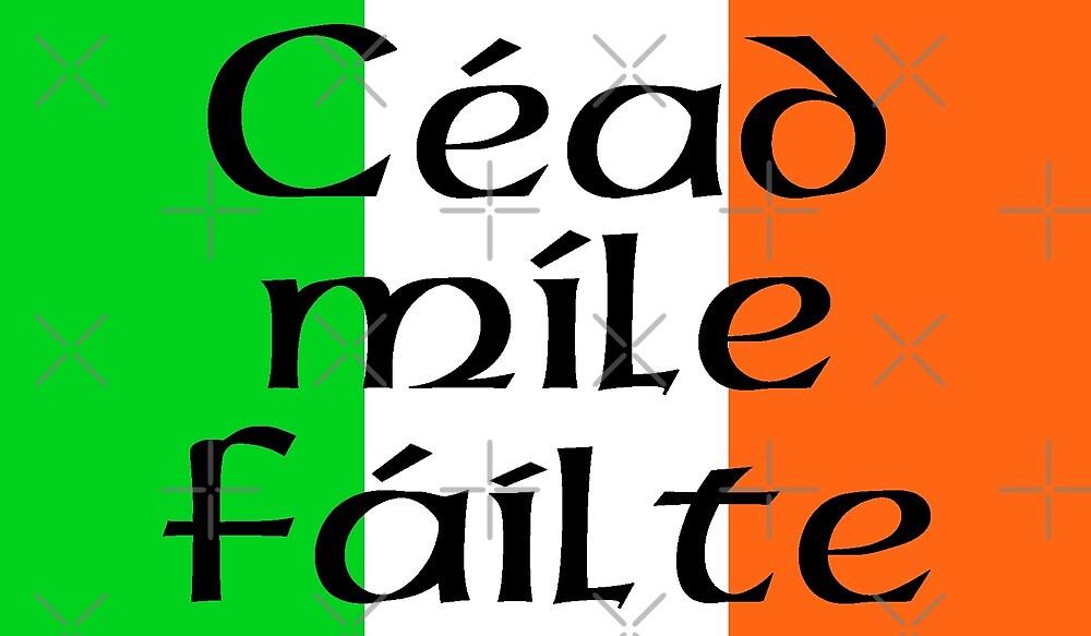 Large Irish Flag with Céad míle fáilte by litmusician