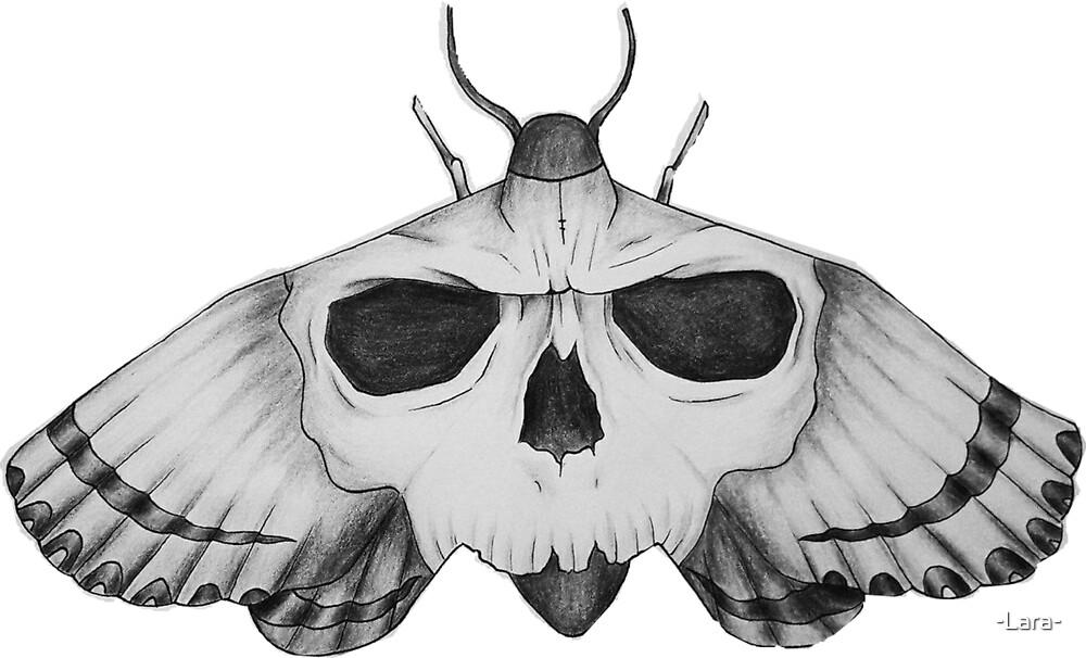 Butterfly by -Lara-
