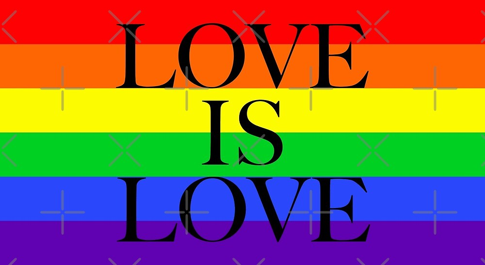 Large Pride Flag with Love Is Love by litmusician