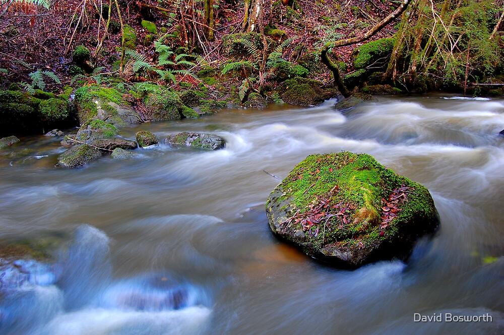Takone stream...... by David Bosworth
