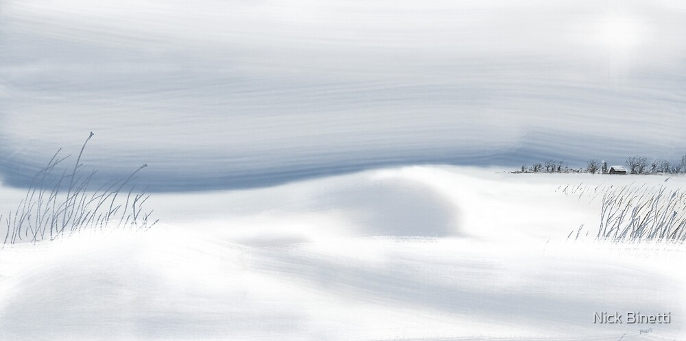 Snow Fields by NICHOLAS BINETTI
