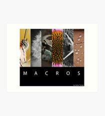 Macros Art Print