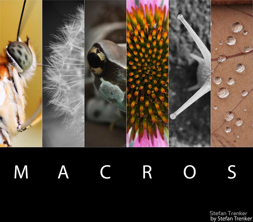 Macros by Stefan Trenker