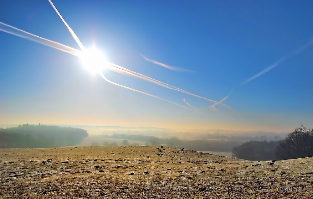 Frosty Misty Sheep by relayer51