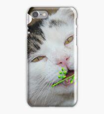 Butch Valentines iPhone Case/Skin