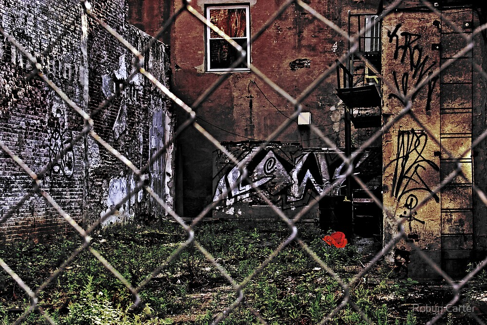 Abandoned Lot II by Robyn Carter