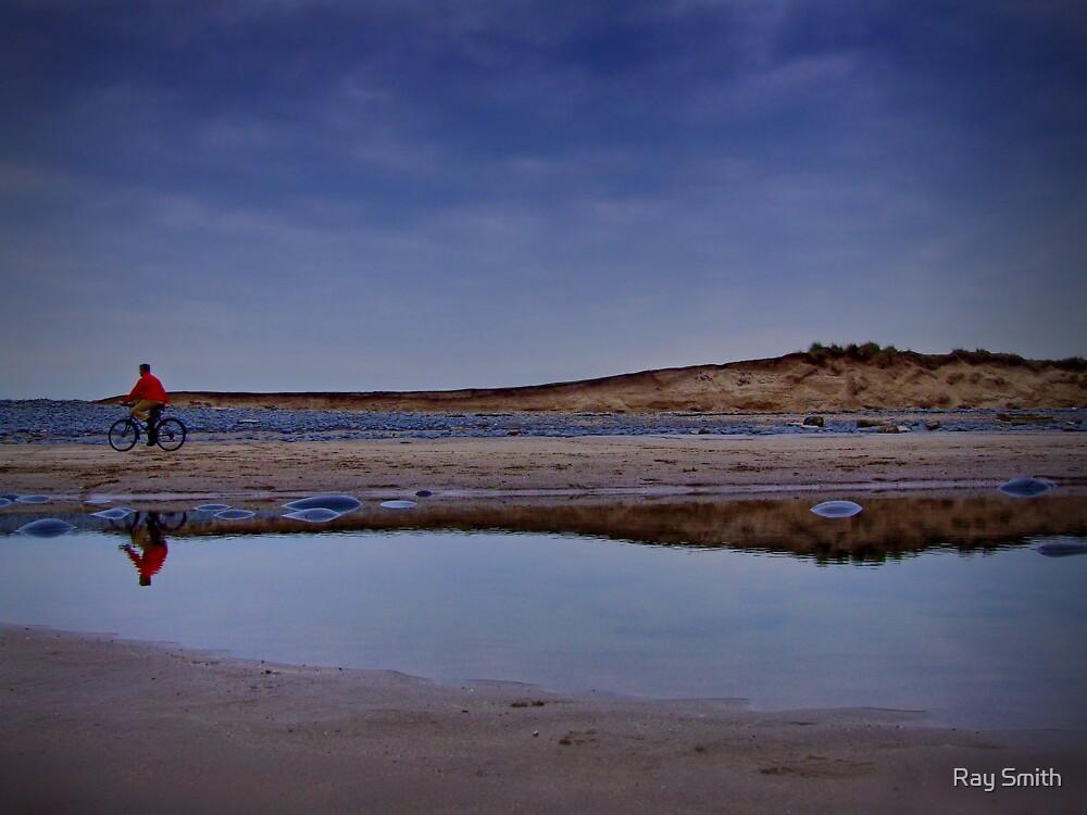 Beach Bike by Ray Smith