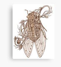 anatomy of cicada Canvas Print
