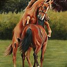 Yearling colts at play by Stephanie Greaves