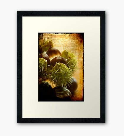 Flavours of Autumn Framed Print