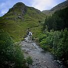 Roadside Creek by Yukondick