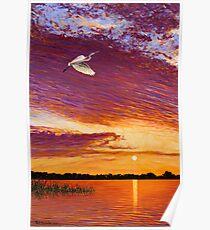 Central Florida Sunset Poster