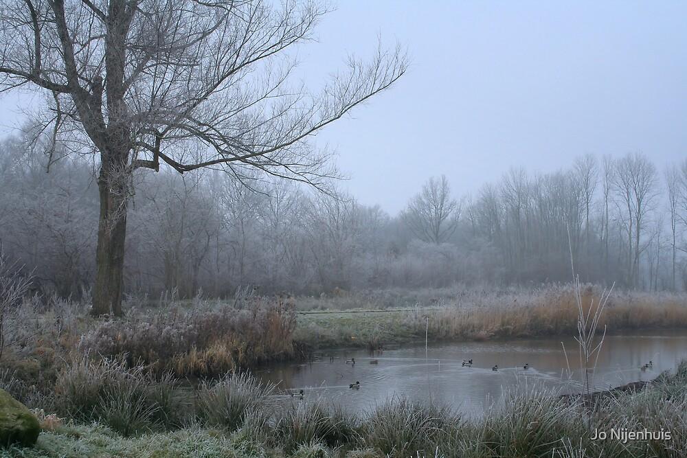 Misty Morning by Jo Nijenhuis