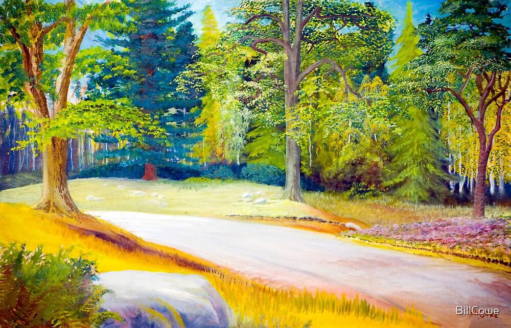 Argyll Forest Park (1) by BillCowe