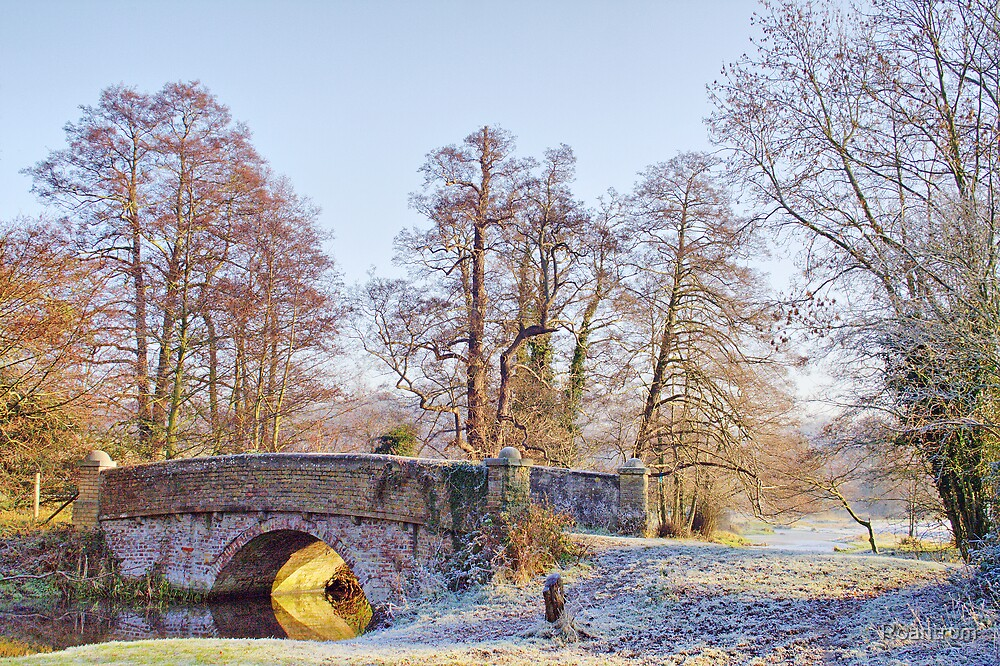 Frosty Morning at Tewin Water Meadows by Roantrum