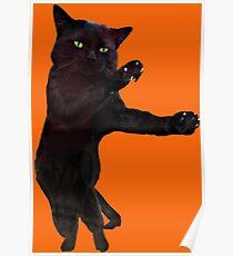Halloween dancing black cat  Poster