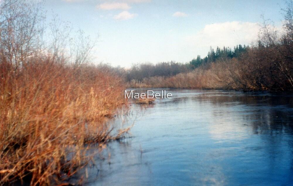 Flood on the Missapasqua River,Sask by MaeBelle