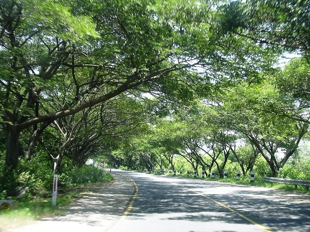 ecr road by pugazhraj