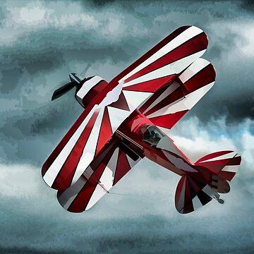 Aerobatics by maryloufletcher