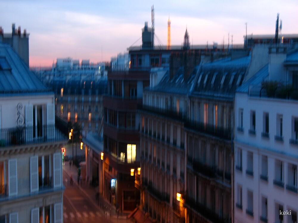 Hazy Paris by keki