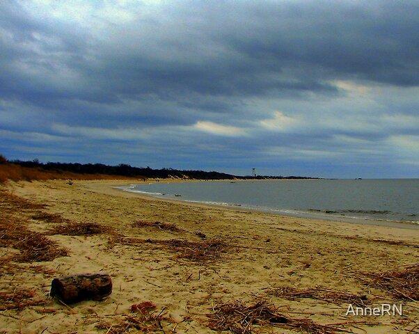Winter Beach by AnneRN
