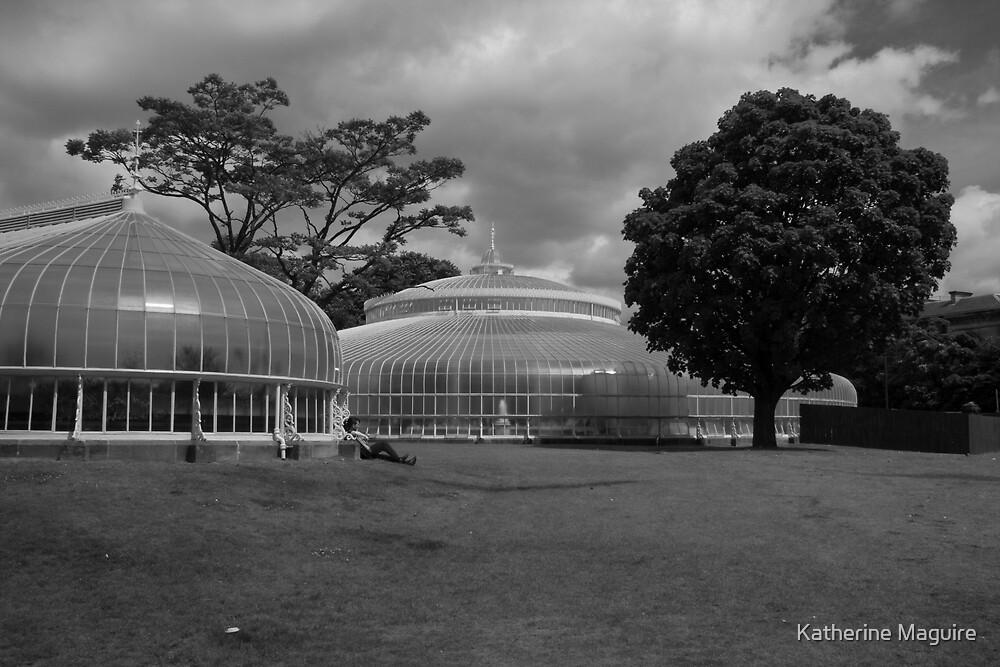 Botanic Gardens by Katherine Maguire