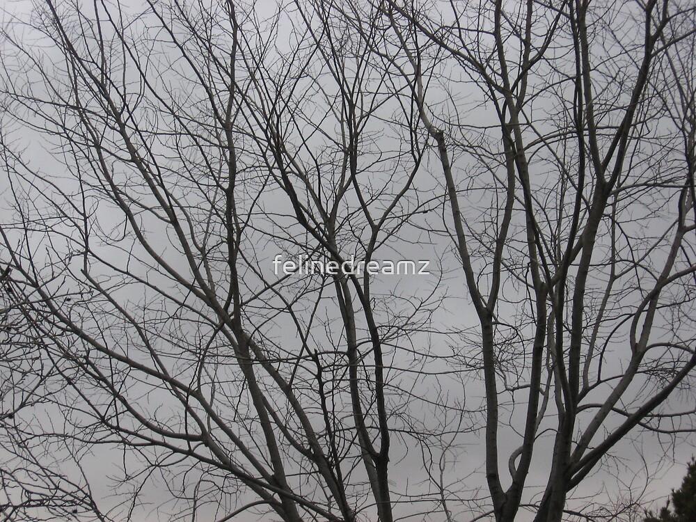 Winter loss by felinedreamz