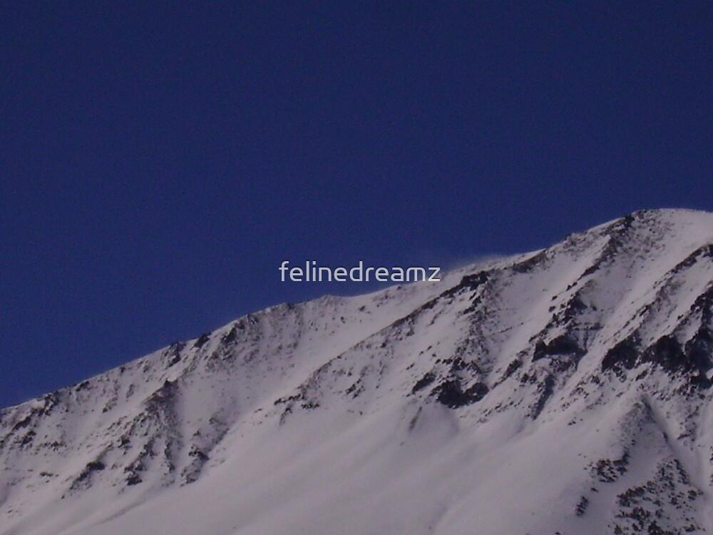 Sierra Nevada Mountains  by felinedreamz